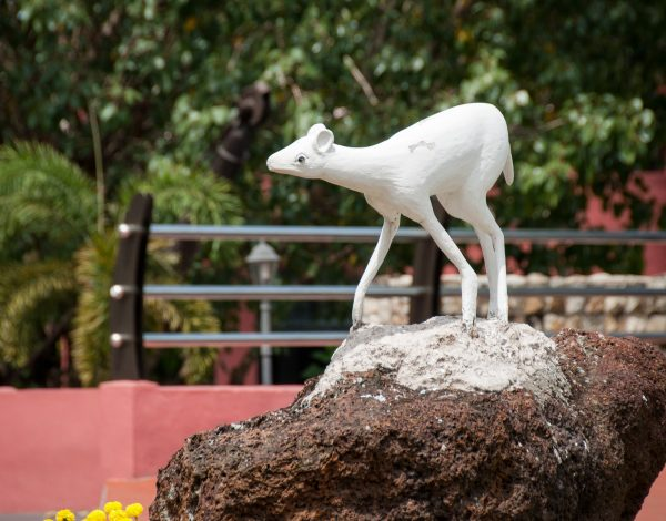 Malacca – from a mouse deer to the UNESCO World Heritage Site
