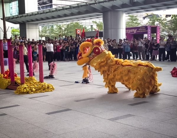The Lion Dance – dancing into the Lunar New Year